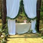 Leśny ślub i wesele