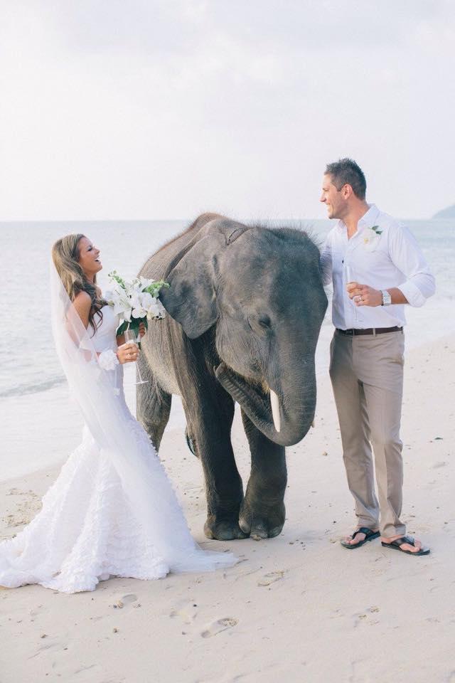 konsultant ślubny, konsultant ślubny warszawa, wedding planner warszawa, organizacja ślubu, organizacja wesela, organizacja ślubu warszawa, organizacja wesela warszawa, moda ślubna, tajlandia, podróż poślubna, ślub za granicą, ślub w tajlandii, ślub w plenerze, inspiracje ślubne
