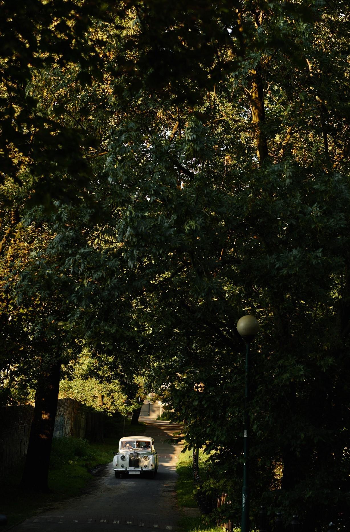 wesele, szmaragd, złoto, konsultant ślubny, wesele w klubie bankowca, greenery, gold, emerald, konsultant ślubny, konsultant ślubny warszawa, wedding planner, organizacja wesel, organizacja ślubów, organizacja ślubu, warszawa, samochód na ślub, samochód na ślub warszawa
